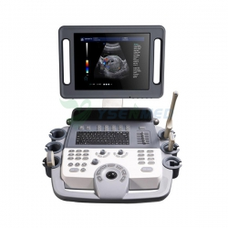 Hot Sales Trolley Color Doppler 3D 4D Ultrasound Machine Price YSB-K100