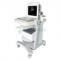 Portable 3D 4D Color Ultrasound Scanner Machine YSB2000