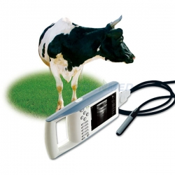 Handheld Ultrasound Scanner For Animals YSB5100V