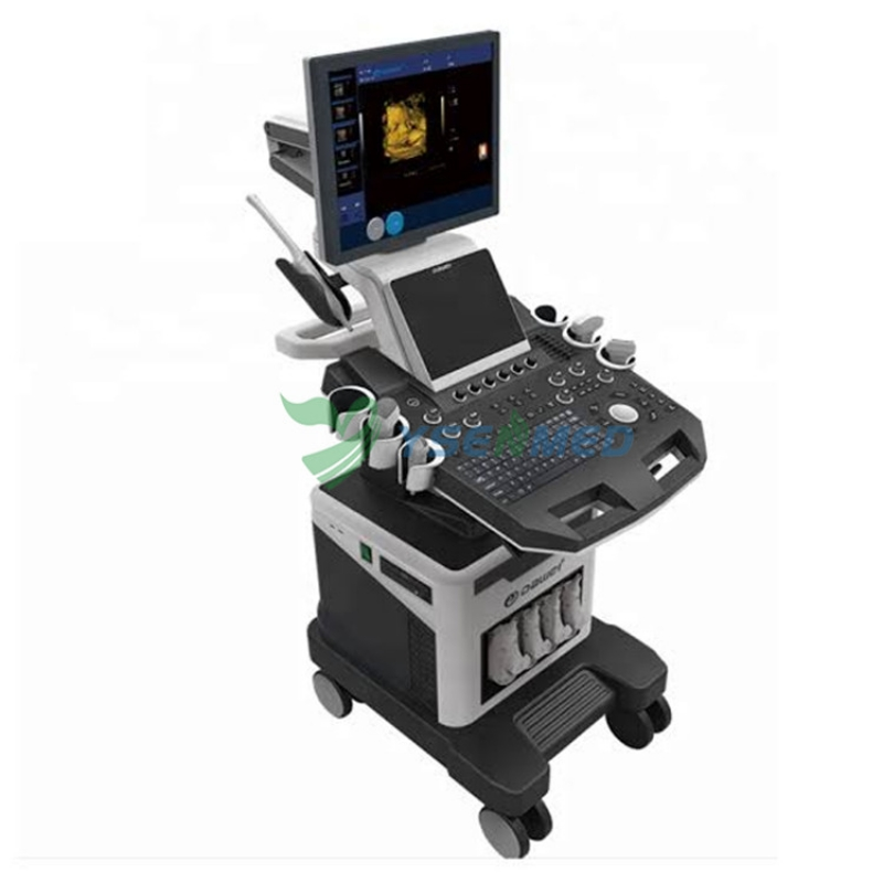 Top Selling Trolley Color Doppler Ultrasound System Price YSB-F5