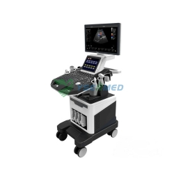 Trolley Color Doppler Ultrasound System Price YSB-T5
