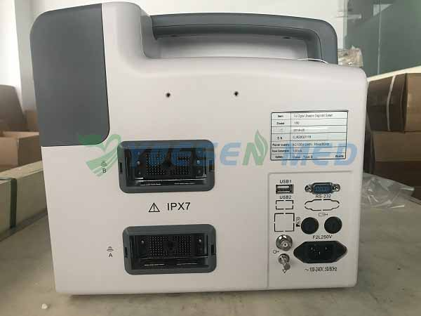 Hot sale portable B/W ultrasound YSB-W180