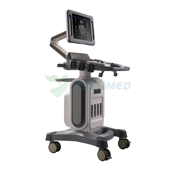 3d ecografo 4d color doppler ultrasound price