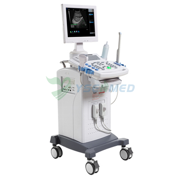 YSB9618C Mobile Trolley B/W Ultrasound Scanner