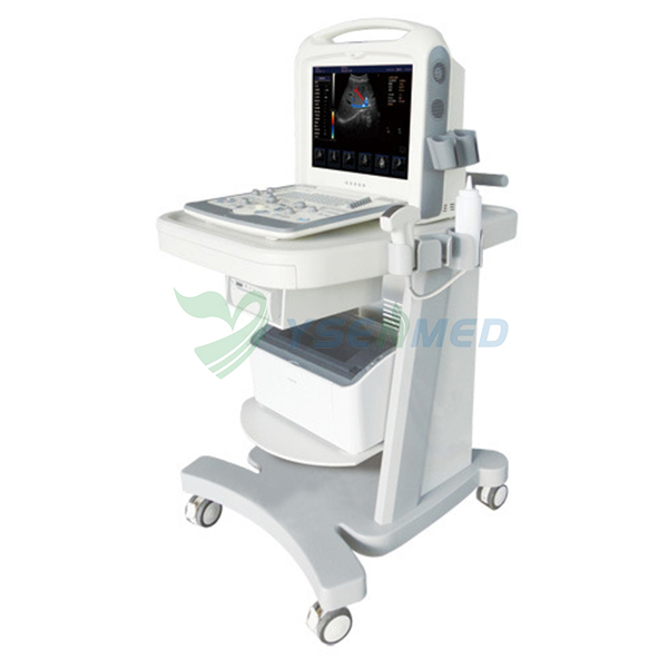 YSB2000 Portable 3D 4D Color Ultrasound Scanner
