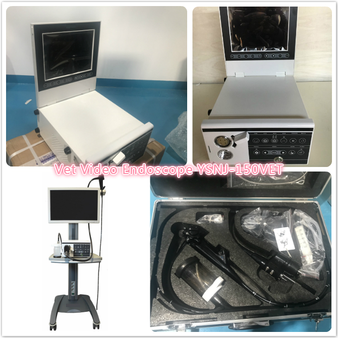 Veterinary Video Endoscope YSNJ-150VET