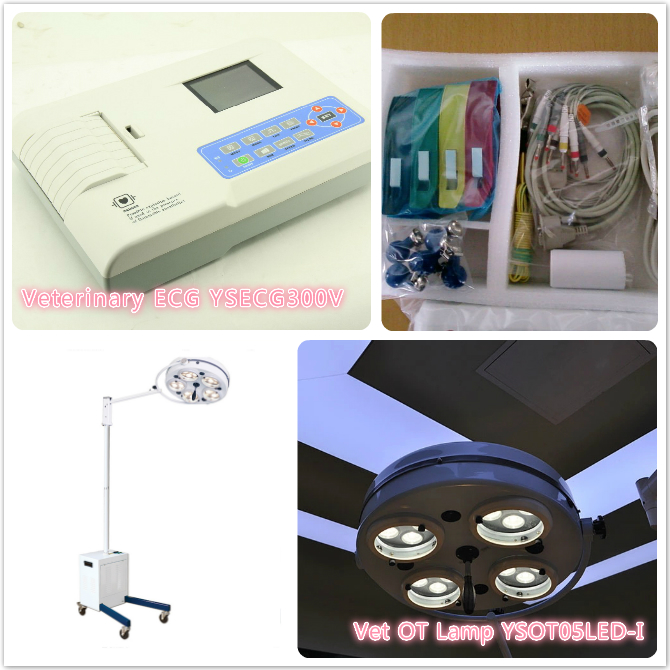 Veterinary ECG YSECG300V and Vet OT Lamp YSOT05LED-I
